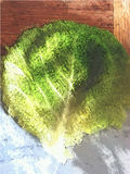 Boerenkoolblad op keukenraad Stock Fotografie