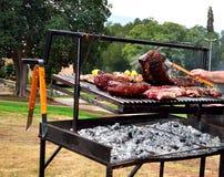 Boeuf de BBQ - Sinta et entrecôte Photo libre de droits