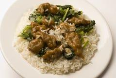 Boeuf mongol avec du riz images stock