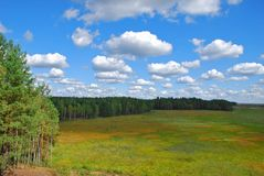 Nature landscape. Cepkeliai Bog landscape on cloudy day. Travel Lithuania, Europe Stock Photos