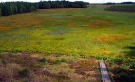 Bog landscape. Cepkeliai Raised Bog landscape. Travel Lithuania, Europe Stock Photo