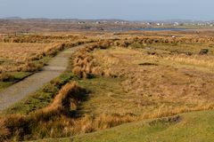 Bog with vegetation, trail and lake. Clifden, Galway, Conemara, Ireland stock photo