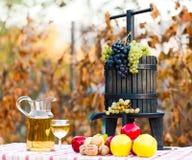 Bogactwo jesień Fotografia Stock