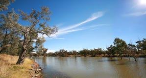 bogan flod Royaltyfria Bilder