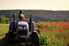 Bogaty żniwo, wiosna sezon, przemysłowy transport obrazy stock