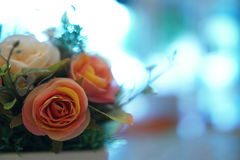 Flowers with bokeh background Stock Images