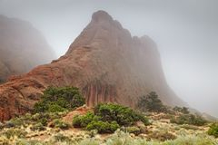 Bogen nationaal park, Utah, de V stock foto's