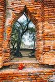 Bogen von Wat Mahathat im Komplex des buddhistischen Tempels in Ayutthaya nahe Bangkok thailand Stockfoto
