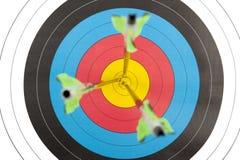 Bogenschießenziel mit Pfeilen in kurzer Abteilung des Feldes Lizenzfreies Stockfoto