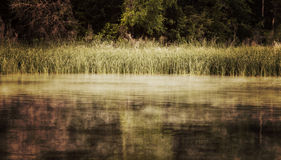 Fog on the water Royalty Free Stock Photography