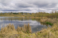Boggy lake with clouds, grasses and trees Stock Photo