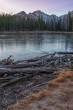 Boginki Jezioro Obrazy Stock
