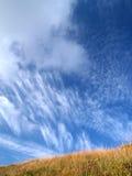 bogland Стоковое фото RF
