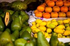bogo宿务市客户果子她的海岛销售菲律宾界面休眠的表蔬菜妇女 免版税库存图片