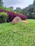 Bogor Presidentieel Paleis in Bogor royalty-vrije stock foto