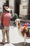 Bogota Colombia gataplats Royaltyfri Foto