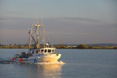 Bogserbåt och journalbang Royaltyfria Foton