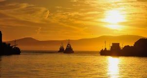 Bogserbåtar i Capetown Royaltyfri Bild