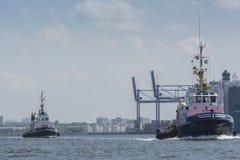 Bogserbåtar som seglar i porten av Amsterdam Royaltyfri Fotografi
