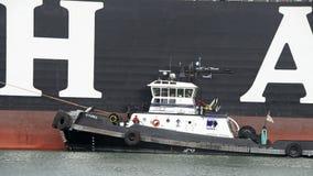 Bogserbåten Z-THREE som hjälper HANJIN, FÖRENADE KINDOM för att manövrera Fotografering för Bildbyråer