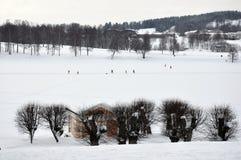 Bogstadvannetmeer in de winter - Oslo stock foto's