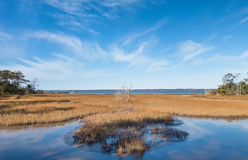 Bogue Sound. Overview of the Bogue Sound coastal area on the Pure knoll shores of Emerald island between the outer banks and the mainland of North Carolina Stock Image