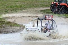 Boguet de marais battant la boue Photos libres de droits