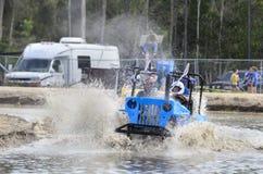 Boguet de marais poussant la boue Images libres de droits