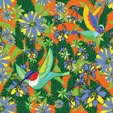Boheemse Zoemende vogel van Paradise stock illustratie