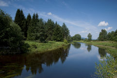 Bohemian forest stock photo
