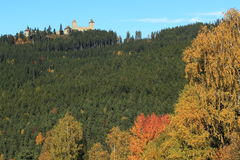 Bohemian forest Royalty Free Stock Image