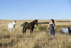 Bohemian woman in field with horses royalty free stock images