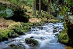 Bohemio Suiza del parque nacional Foto de archivo