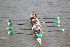Bohemios Praga ocho - 100a raza del rowing de Primatorky Foto de archivo libre de regalías