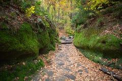 BohemSchweiz nationalpark Arkivbilder
