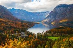 Bohinj湖鸟瞰图在朱利安阿尔卑斯山,斯洛文尼亚 免版税库存图片