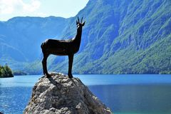 Bohinj, Lake Bohinj, Bohinj Lake Stock Photos
