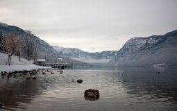 Bohinj lake Royalty Free Stock Photos