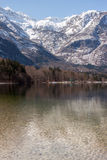 The Bohinj Lake Shore and snowy mountains Stock Images