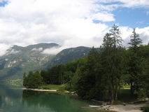 Bohinj lake in slovenia. Amazing landscape of water and forest at Bohinj lake in slovenia Royalty Free Stock Images