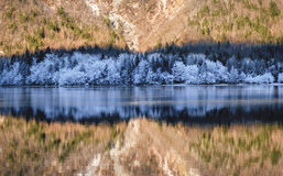 Bohinj lake winter. Winter reflection on Bohinj lake Stock Photos