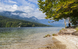 Bohinj See, Slowenien Lizenzfreie Stockfotos