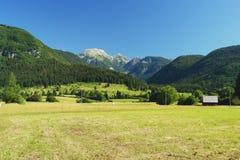 Bohinj, Slovenia. View from meadows on Triglav National Park, Slovenia Stock Photos