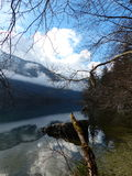 A View of trees and mountain along Bohinjska Jezer Royalty Free Stock Image