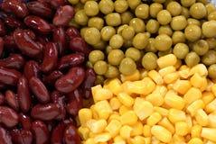 Bohne, Mais, Erbse lizenzfreie stockbilder