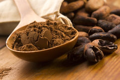 Bohnen des Kakaos (Kakao) Stockfotografie