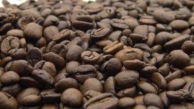 Bohnen des Röstkaffee-4k, die auf weißen Hintergrund fallen Bestandteil für einen Kaffee stock video footage