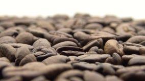 Bohnen des Röstkaffee-4k drehen sich auf weißen Hintergrund Bestandteil für Kaffee stock footage