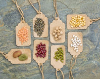 Bohnen-, Linsen-, Erbsen- und Sojabohnenölzusammenfassung Stockbilder