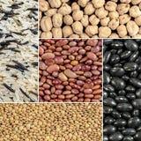 Bohnen, Linsen, Reis, Kichererbsen Lizenzfreies Stockfoto